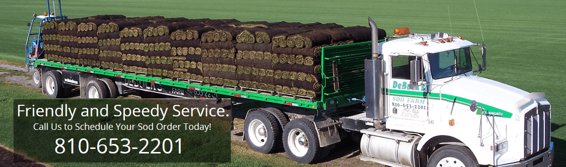 MI Sod Farm Sod Delivery
